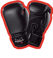 Free Boxing Gloves